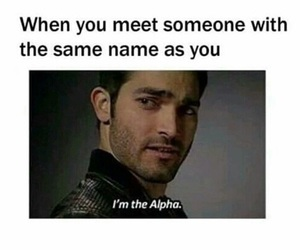 funny, alpha, and teen wolf image