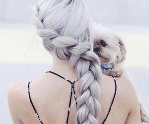 al, dog, and braif image