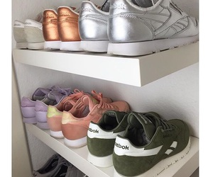 shoes and reebok image