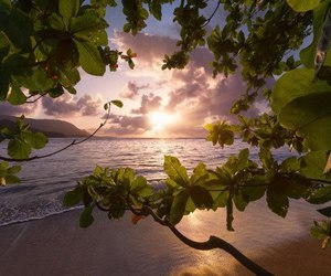 landscape, ocean, and relax image