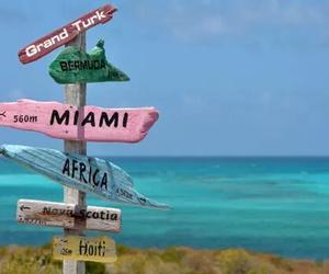 beach, Miami, and haiti image