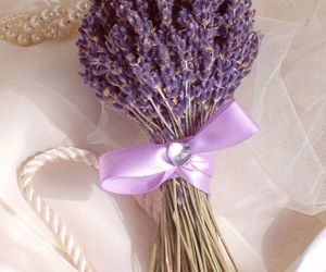 flowers, lavender, and background image