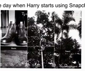 Harry Styles, snapchat, and funny image