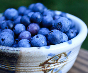 blueberry, fruit, and food image