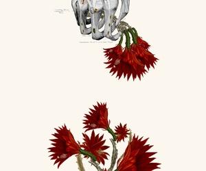 anatomical and art image