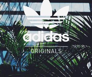 adidas, wallpaper, and original image