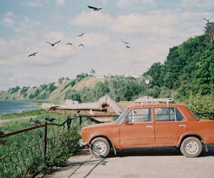 car, vintage, and bird image