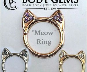 fashion, meow, and daith piercing image