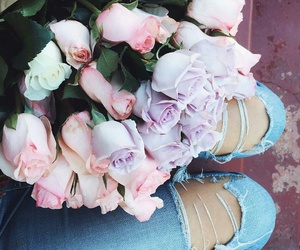 pink roses, pastel roses, and white roses image