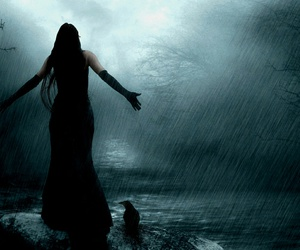 rain, dark, and crow image