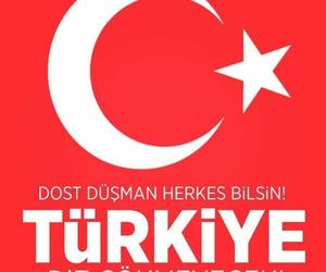 turk, turq, and vatan image
