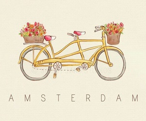 amsterdam, flowers, and bike image