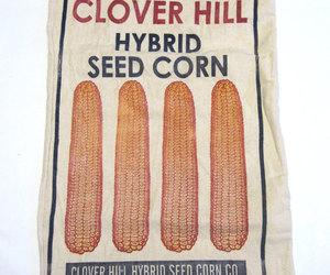 bag, corn, and farm advertising image