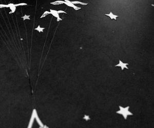 tumblr, siir, and küçük prens image