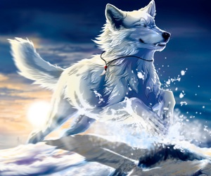animal, wolf, and fantasy image