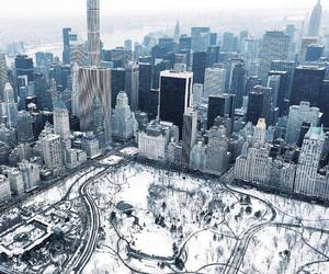 Central Park, earth, and nature image