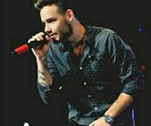 1d, liam payne, and gordito image