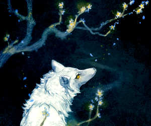 wolf, art, and white image