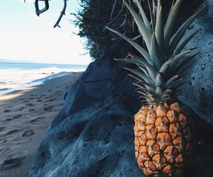 pineapple, beach, and food image