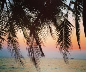 beachlife, Vietnam, and longbeach image