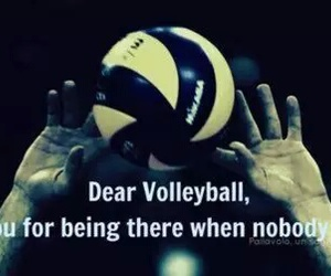 volleyball and life image