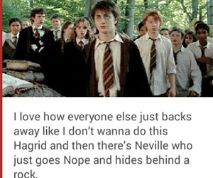 funny, harry potter, and movie image