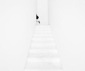 white, black, and minimalism image