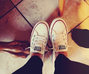 converse, new, and shoes image