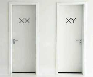 aesthetic, doors, and white image