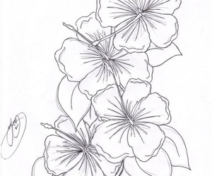 drawing, hibiscus, and tattoo image