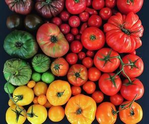 food, tomato, and colorful image