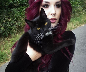 hair, cat, and black image