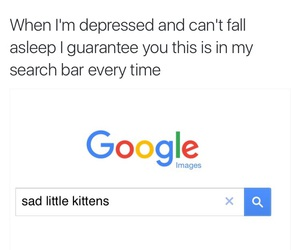 cat, cats, and depressed image