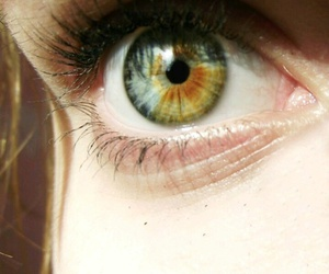 blue, brown, and eye image