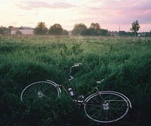 bicycle, vélo, and grass image