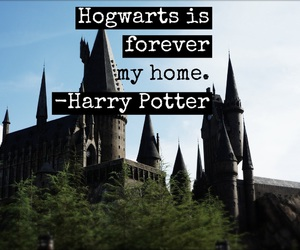 easel, forever, and harry potter image