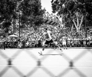 federer, sports, and nike image