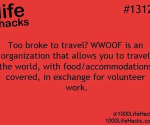 hacks, travel, and life hack image