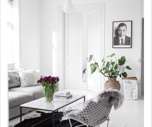 grey, interior, and flowers image