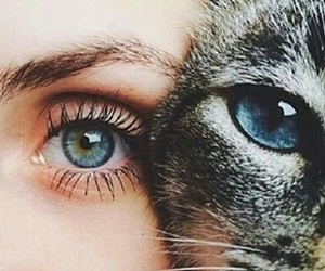 blue, girl, and cat image
