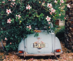 flowers, car, and vintage image