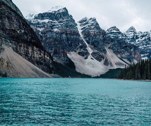 dog, mountains, and lake image