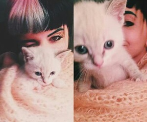 cat, melanie martinez, and singer image