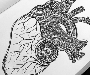zentangle, art, and heart image