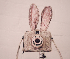camera, bunny, and pink image