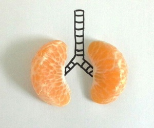 citrus, color, and fitness image