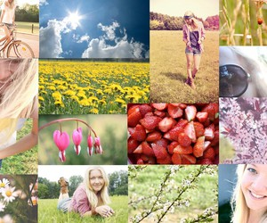 Collage, flowers, and freedom image