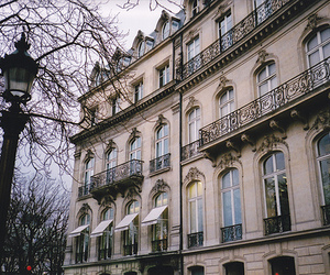 film, paris, and yashica t4 image