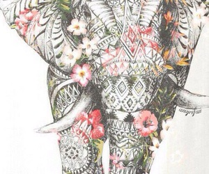 elephant, flowers, and elefante image