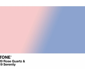rose quartz and serenity image